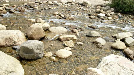 ток : Swift moving shallow water in a rocky mountain stream.