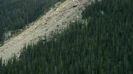 múlt : Scars of a long ago rock slide on the side of a mountain in Rocky Mountain National Park.