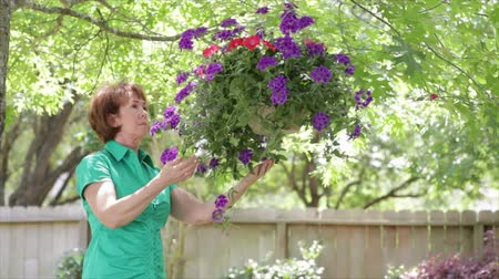 вешать : A mature woman tending to a large flowering plant in a hanging basket in a garden setting.