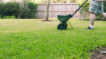 trawnik : Homeowner fertilizing the lawn slow motion