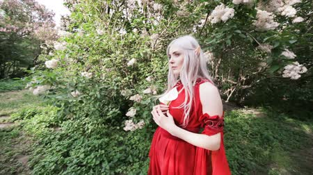 enchanted princess : In a fairy-tale garden, an elf woman in a red dress. Stock Footage