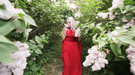 мифический : Beautiful elf girl in a red dress stands in a spring garden among flowering bushes.