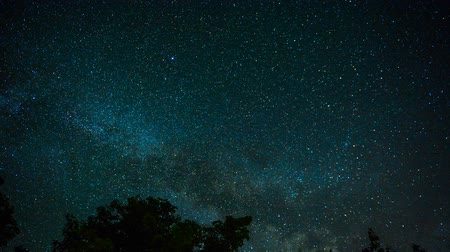 tava : Stars and The Milky Way Over Calm Water Stok Video