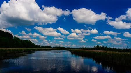 tavasz : Reflections - Spring Clouds