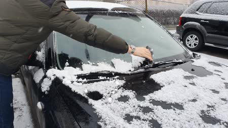 kabuksuz tahıl : Cleaning the car that was snowing. Winter cold morning, black car Stok Video