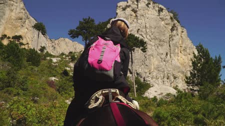 Female tourists climb the mountain on horseback, back view Stockvideo