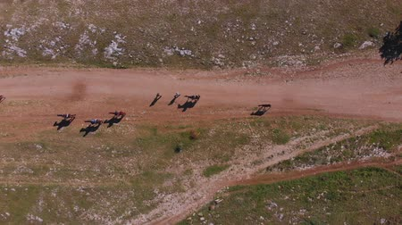 Aerial top view: group of people ride horses on mountain valley on sunny summer day Stock mozgókép