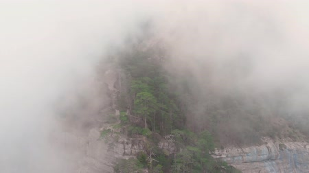 Misty forest, drone flying through the clouds at the top of mountain, aerial shot