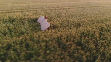 lady walks along field holding glider wings in evening Stok Video