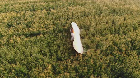 davinci : lady silhouette walks along field holding glider wings Stock Footage