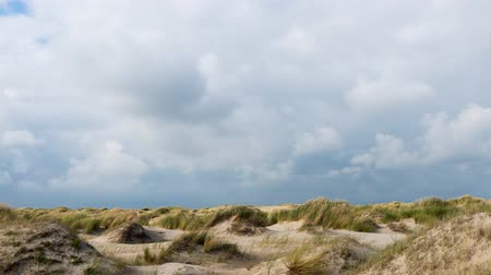 Time Lapse of moving clouds with view on the dunes or National Park The Dunes or Texel on the isle of Texel, the Netherlands.