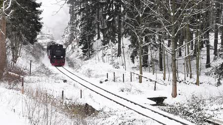 puffing : Drei Annen Hohe, Germany - February 5, 2018: Steam locomotive of the Harzer Schmallspurbahnen in wintertime with snow passing by.