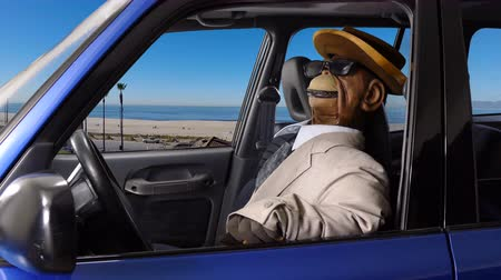 caracteres : Puppet monkey enjoying a drive at the beach.