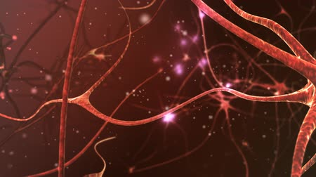 research : Neuron network. V.3 Stock Footage
