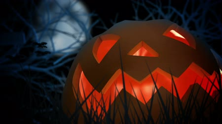 october : Halloween Pumpkin. Stock Footage