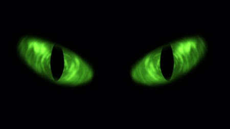 Animation of green cat eyes blinking.  Стоковые видеозаписи