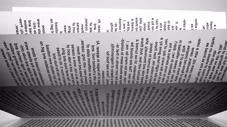 blank : Pages of a book.