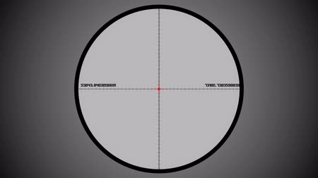 crosshair : Snipers scope sight view. Matte Channel included.