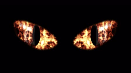 yaban kedisi : A beast looking 3d rendering of big black cat eyes with oval irises and yellow retina with sparkling flashes of fire. The eyes twinkle and turn gradually into white eyeballs. Stok Video