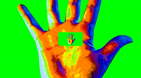 An opt art 3d rendering of a psychedelic tunnel in a human hand showing a high five gesture in the colorful background. A small hand grows in a big one forming a hypnotic channel.