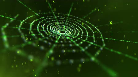 A mysterious 3d rendering of a green old spider net put aslant in the black background. It moves slowly among flying cyberspace digits such as one, zero and Latin ten.