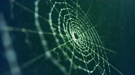 feiticeiro : An enigmatic 3d rendering of a spider web placed diagonally in the dark green background. It looks unusual and frightening like an entrance to some mystic fairy tale kingdom. Stock Footage
