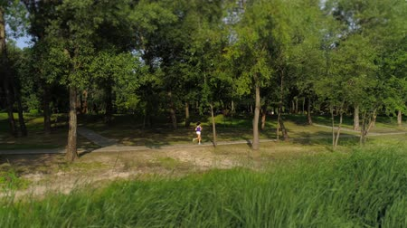 homeland : Woman running in the park outdoors. Distant plan Stock Footage