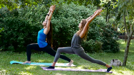 életerő : Young beautiful women practice warrior 1 yoga pose in a park. Sunlight on a background