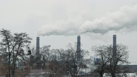emissions : Smoke comes out of factory chimneys against a gray winter sky