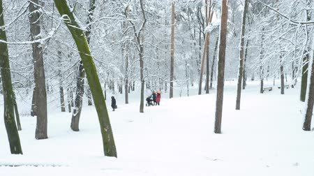 toboggan : Two woman with baby carriage walking in snowy park. Aerial shot. Maternity concept