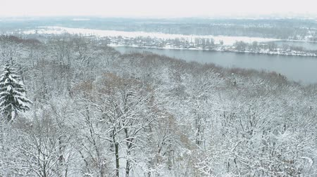 назад : Backward fly over beautiful snowy forest on the river bank. Aerial Стоковые видеозаписи