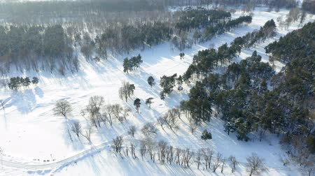мороз : Fley over amazing winter landscape early in winter