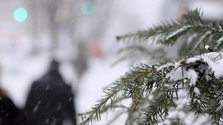 snow covered spruce : A busy city during a snowfall. Spruce with garland in the foreground Stock Footage