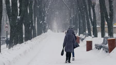 abandonment : Two women go on a snowy road in the park during a snowstorm Stock Footage