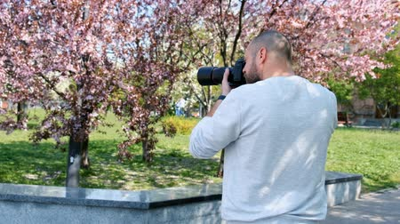 Bearded photographer in work process. A man takes photo of sakura on a digital camera Vídeos