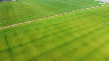 palety : Aerial fly over a green lawn. Fresh green grass shot from top view. Tilt camera move 4k Dostupné videozáznamy