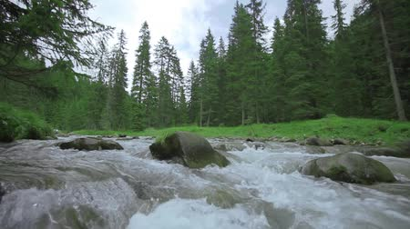 ébredés : A stream in slow motion with boulders in the middle and green nature behind