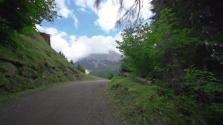 parte : Beautiful road in the woods that opens a beautiful view of the rocky mountains that reach the sky Stock Footage