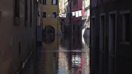 sel : Street of the city of Venice with high water Stok Video