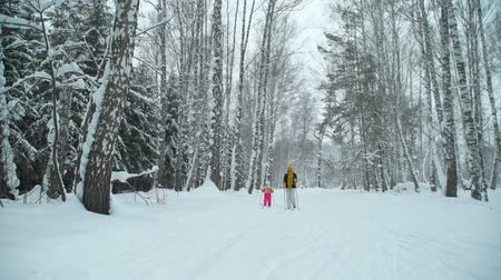 szibéria : Woman and Little Girl Skiing in Winter Forest