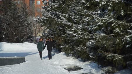 walentynki : Young Couple Walking in Winter City Park Wideo