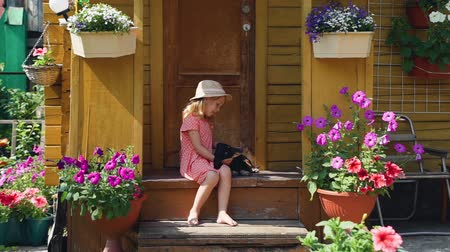 daksund : Cute Little Girl Playing with her Dog in Summer Day while Sitting on the Porch of a Country House. Friendship of Child and Dachshund Dog. Slow Motion. The Concept of a Happy Childhood
