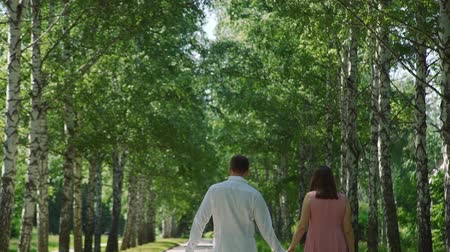 walking back : Rear View of Man and Woman Holding Hands and Walking in a City Park in Summer Day. Love, Dating, People and Holidays Concept