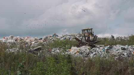 consumerism : Bulldozer Moving Trash in a Landfill Site against Blue Sky Full of Birds. Concept of Environmental Pollution and Waste Recycling Stock Footage