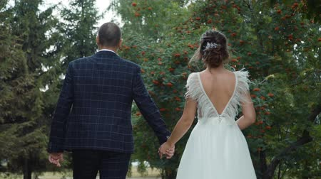 nowożeńcy : Bride and Groom Holding Hands and Walking in the Park. Back Side View. Happy Marriage and Wedding Day Concept