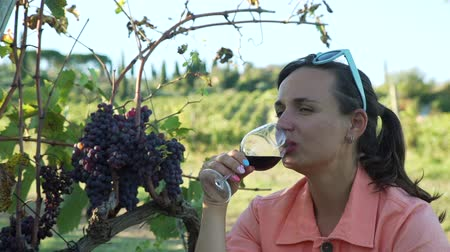 Young Woman Tasting Red Wine while Sitting near Bunches of Red Grapes on a Sunny Day. Rows of Green Vineyards are on the Background. Tuscany, Italy. Slow Motion. Vineyard Agriculture and Wine