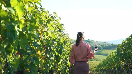 Back View of Beautiful Woman with Glass of Red Wine Walking Through Vineyards in Val d Orcia. Tuscay, Italy. Slow Motion. Vineyard Agriculture and Wine Tasting Concept