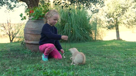 Five-year Little Girl Playing with Cute Ginger Kitten on the Backyard. Pets and Animals Concept