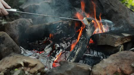 mályvacukor : Roasting Marshmallow On Camp Fire - Close Shot