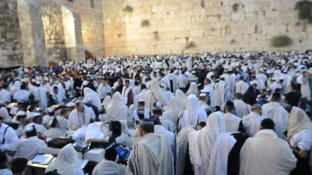 tallit : JERUSALEM - SEP 25 : Jewish men prays during the penitential prayers the Selichot , held on September 25 2012 in the Wailing wall in Jerusalem Israel  Stock Footage
